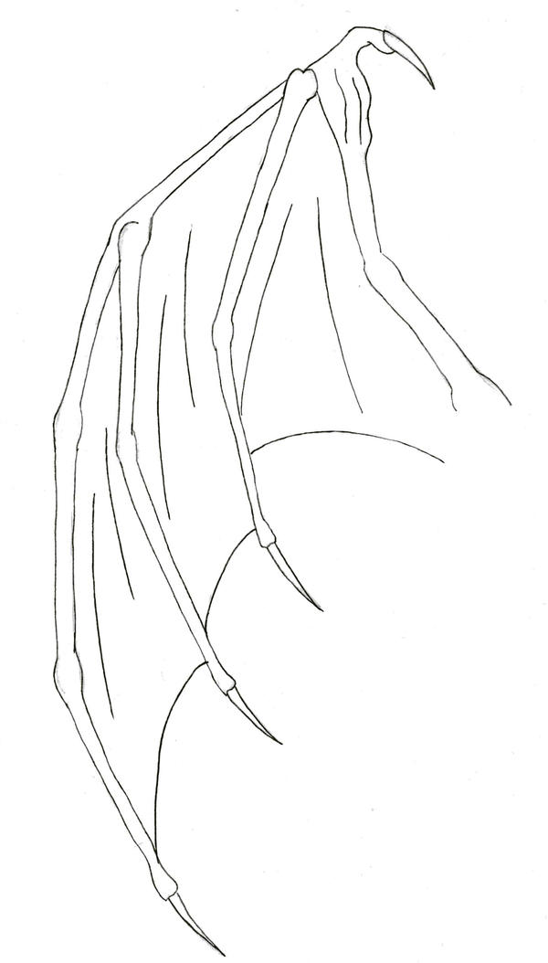 dragon wing by sapphire-blackrose