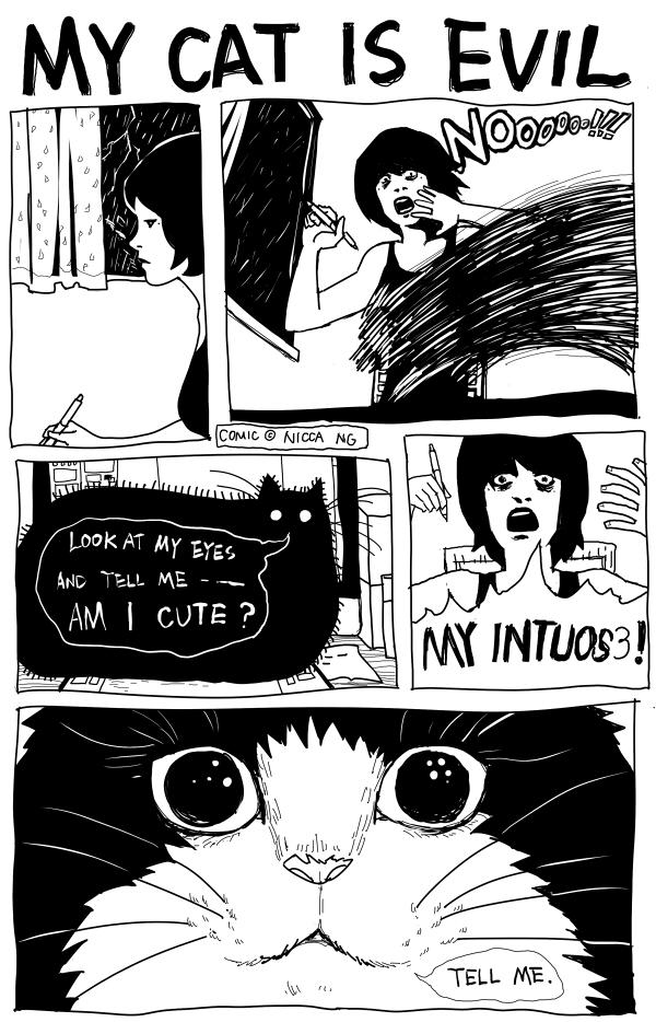 http://fc01.deviantart.net/fs71/f/2011/272/e/c/my_cat_is_evil_by_nicca_11y-d4b9uxk.jpg
