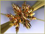 Quadriflower 2