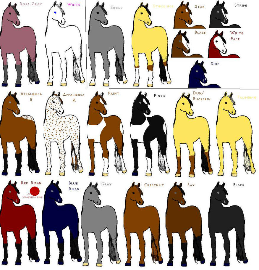Horse Colors + Markings by tenshichild on DeviantArt
