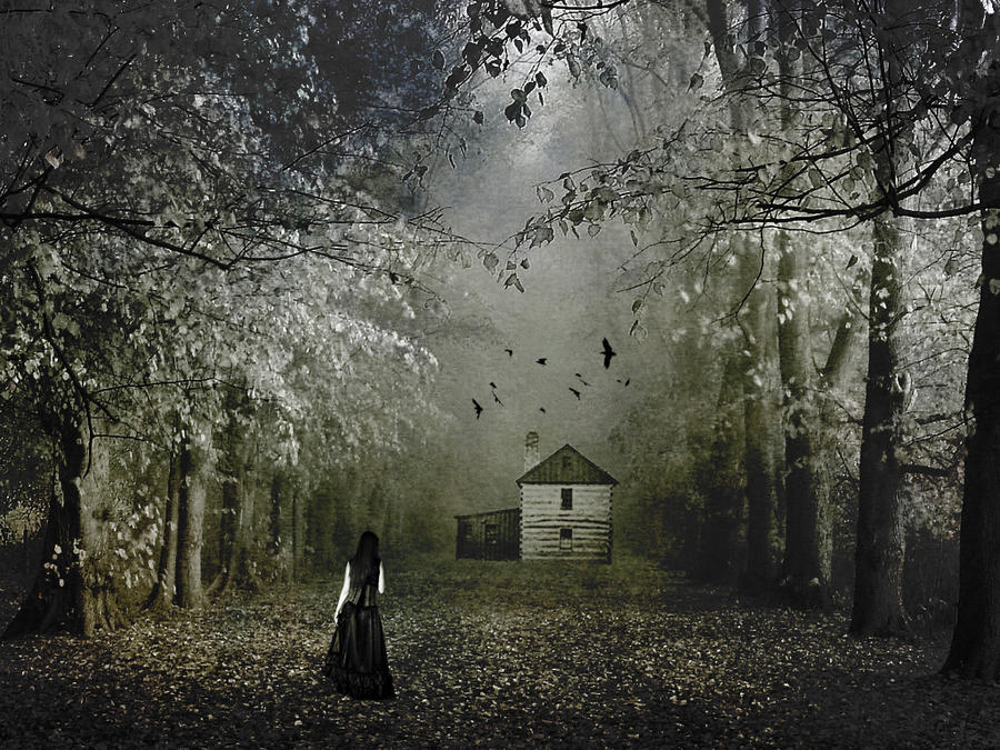 The house in the woods by katmary on deviantart - The house in the woods ...
