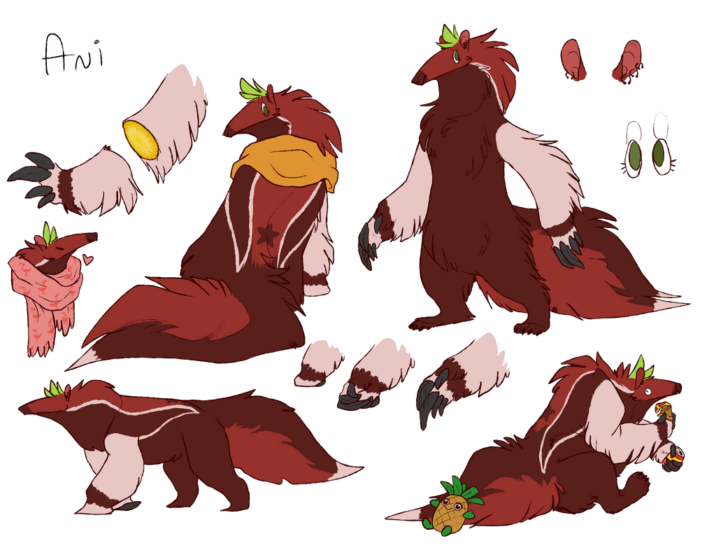 Brand New Ani Ref by red-anteater