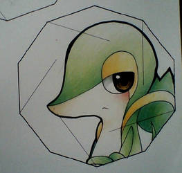 Pokemon Starters DODECASCIBLAHBLAHBLAH by oOMarikoOo