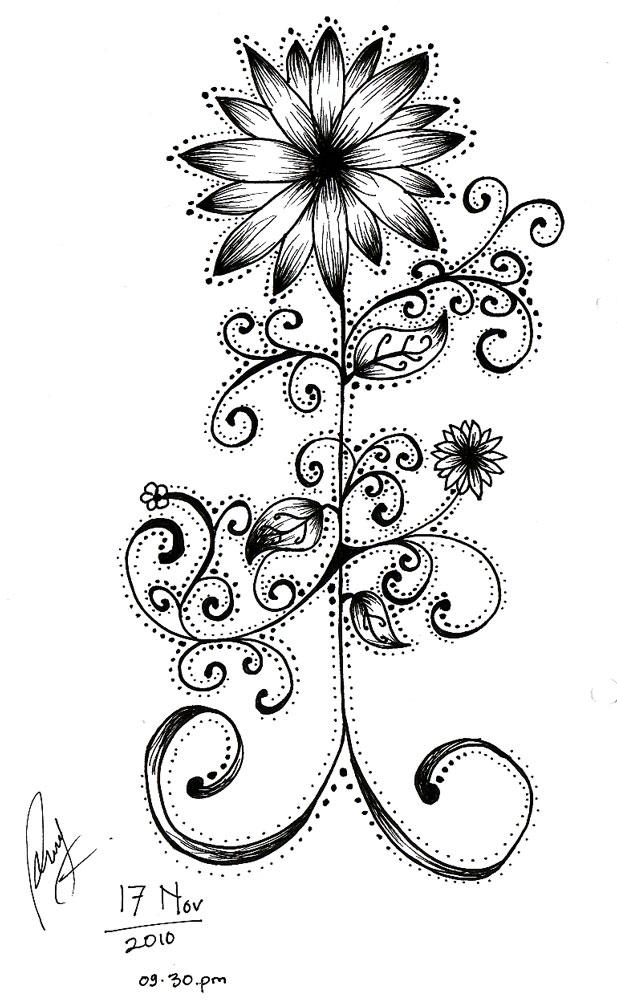 Sketsa Bunga Sketsa Gambar Bunga Dahlia
