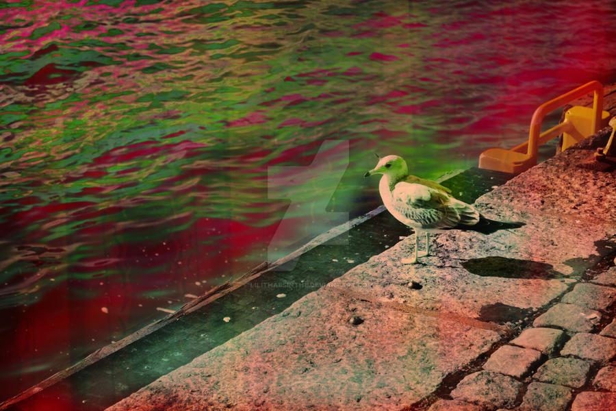 Disco seagul unicorn by LilithAbsinthe