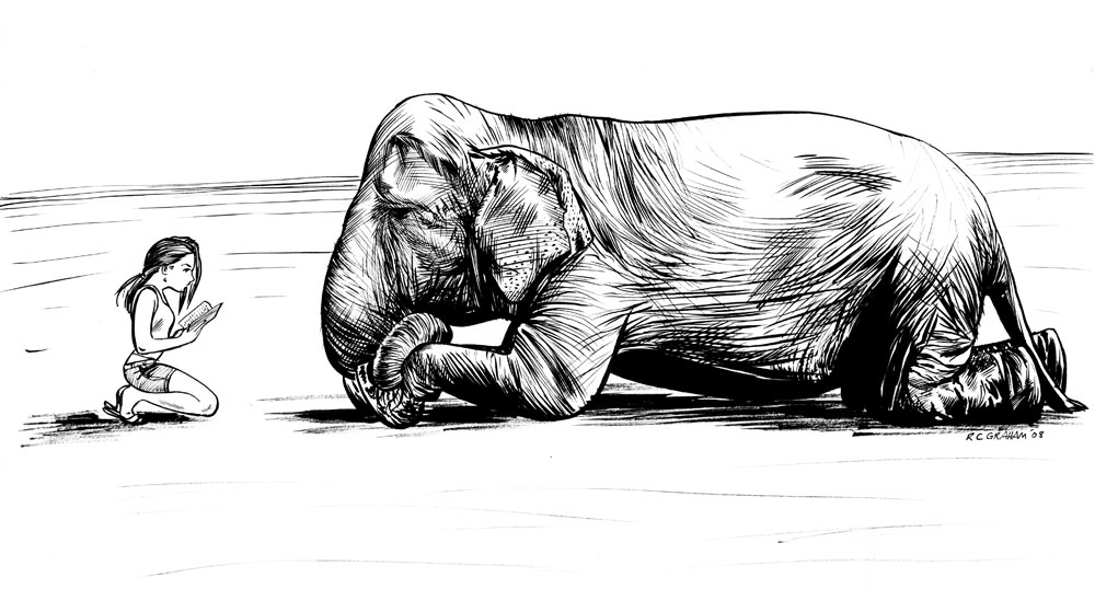 Elephant and Sassy by renonevada