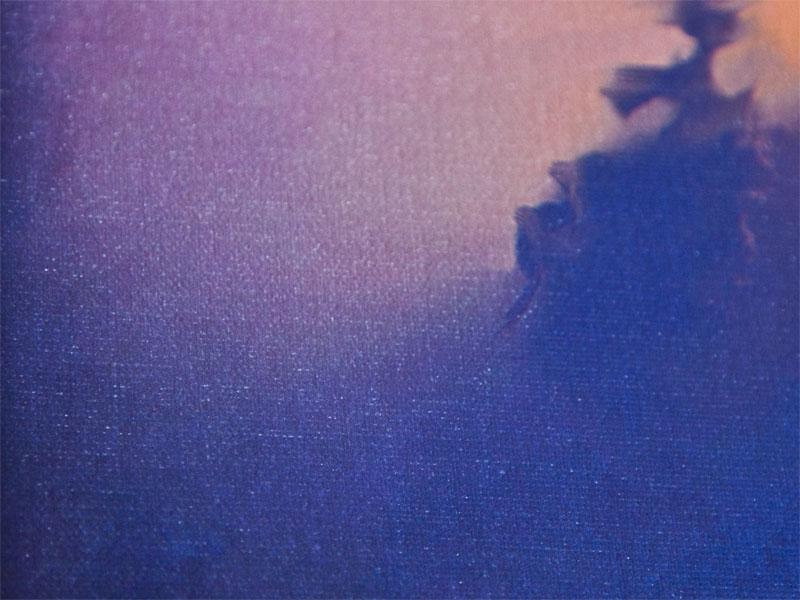 Canvas-2--Texture by renonevada