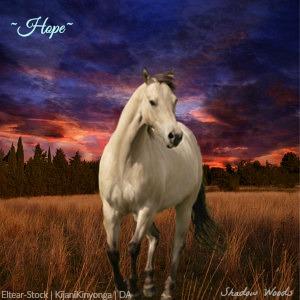 ~Hope~ Stable Art by Pingrazer