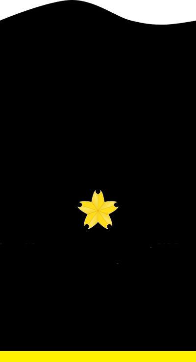 489px-JMSDF Ensign insignia (a).svg