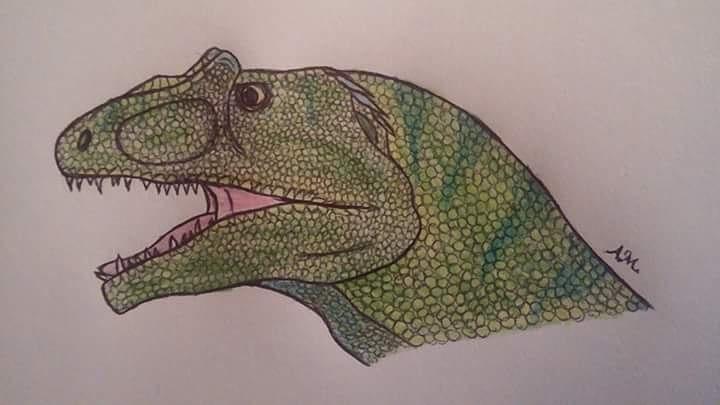 Allosaurus Head Request by Ravakian-RavenScar