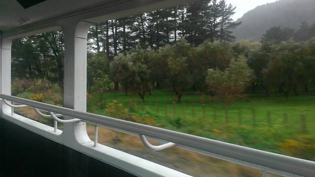 NZ Countryside via Rail (1)