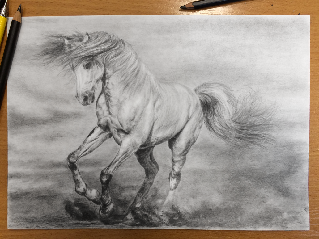 Galloping horse sketches - photo#46