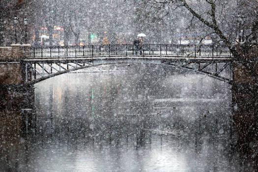Winter day in Riga