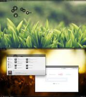 Desktop August II by MadMilov2