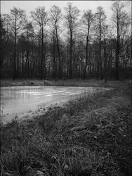 Ice Lake by tthitt