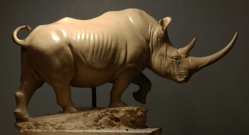 White Rhino in clay by JordanAbernethy