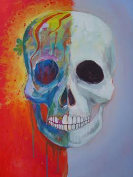 Skull unfinished