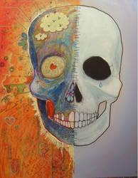 Skull updated