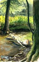 the hidden brook by jennomat