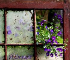 Summers Broken Window
