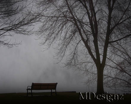The Beauty The Fog Holds Closely To Herself