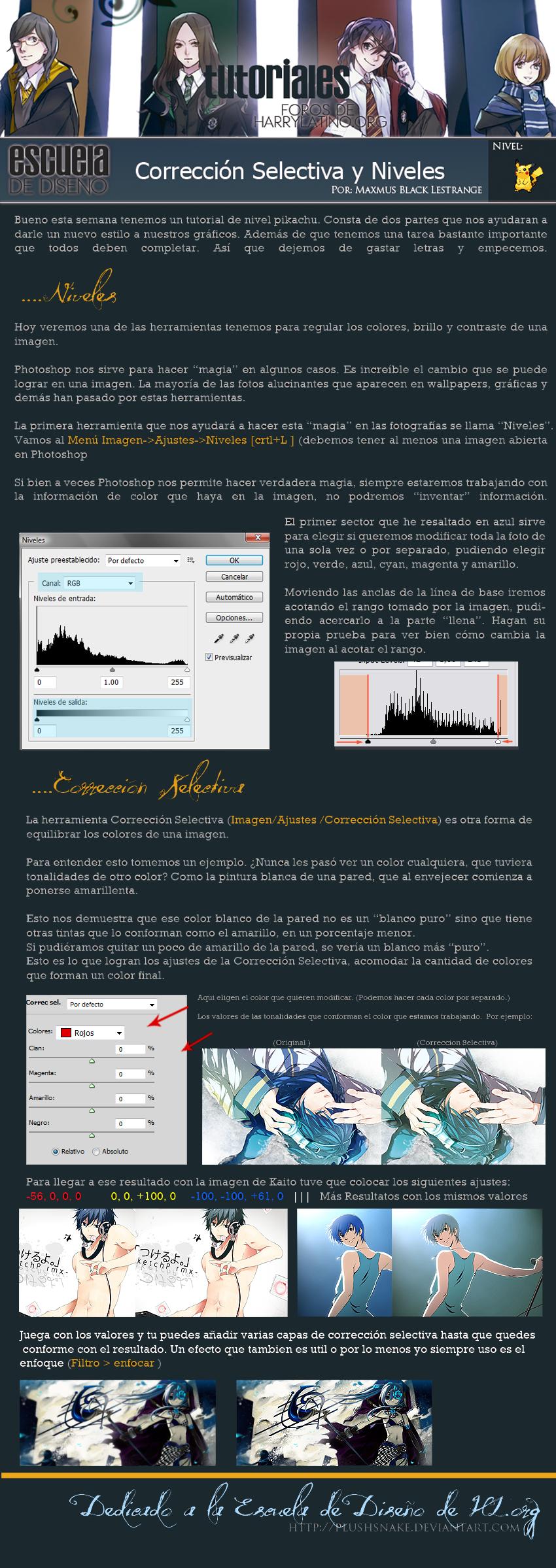 correcion_selectiva_y_niveles_by_disenoh