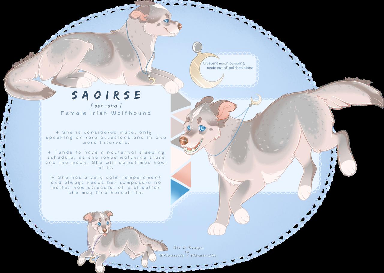 irish moonhound adoptable (closed)