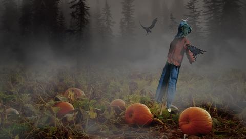 Foggy Pumpkins - PSP-Wallpaper by vir0x