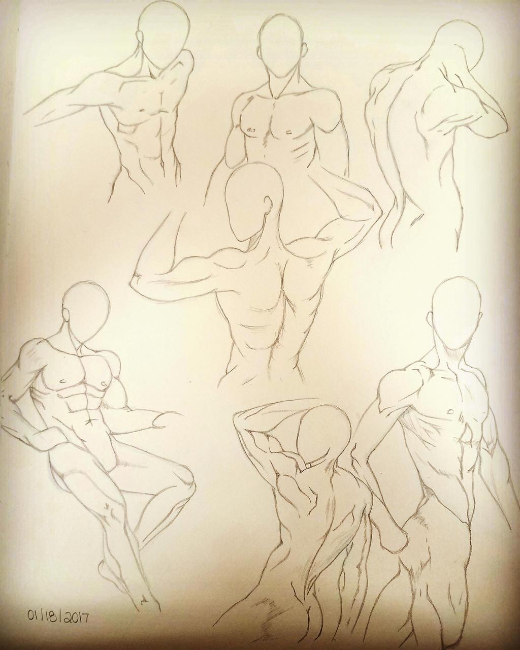 Male Anatomy Poses by KoalaTheArtist on DeviantArt