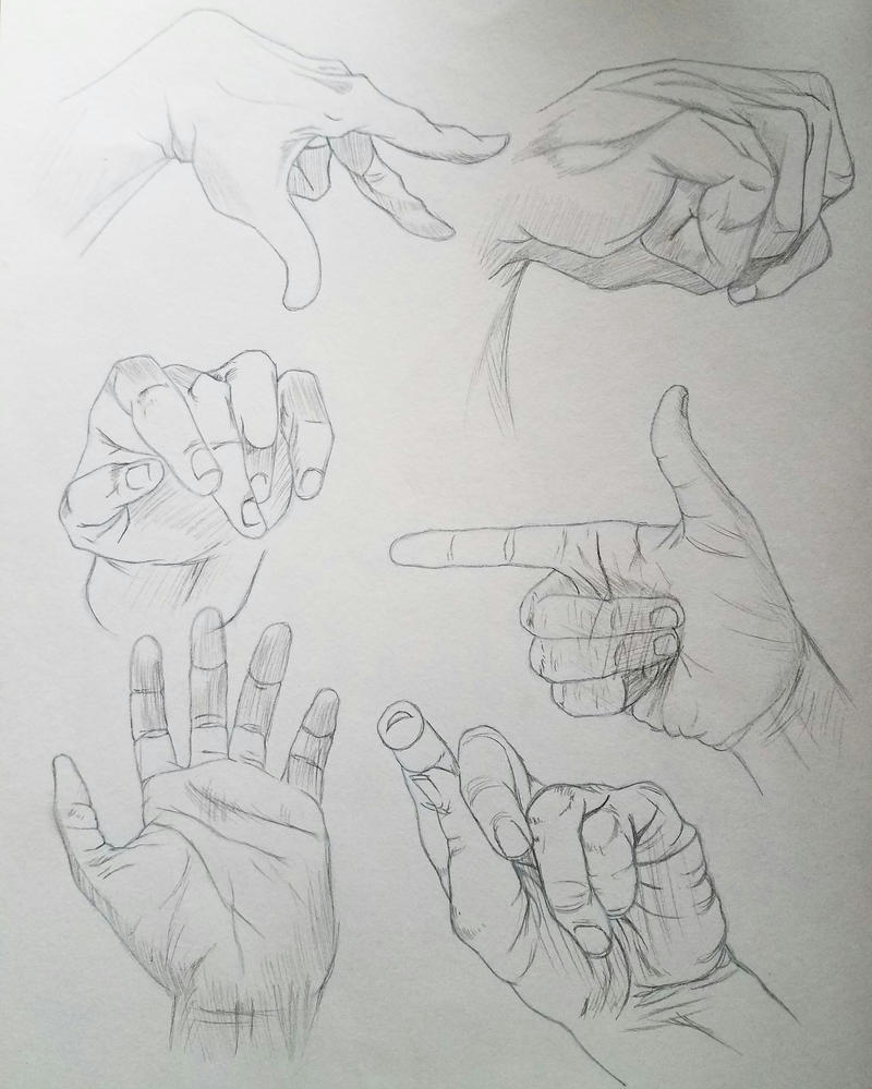 Hand Anatomy by KoalaTheArtist on DeviantArt