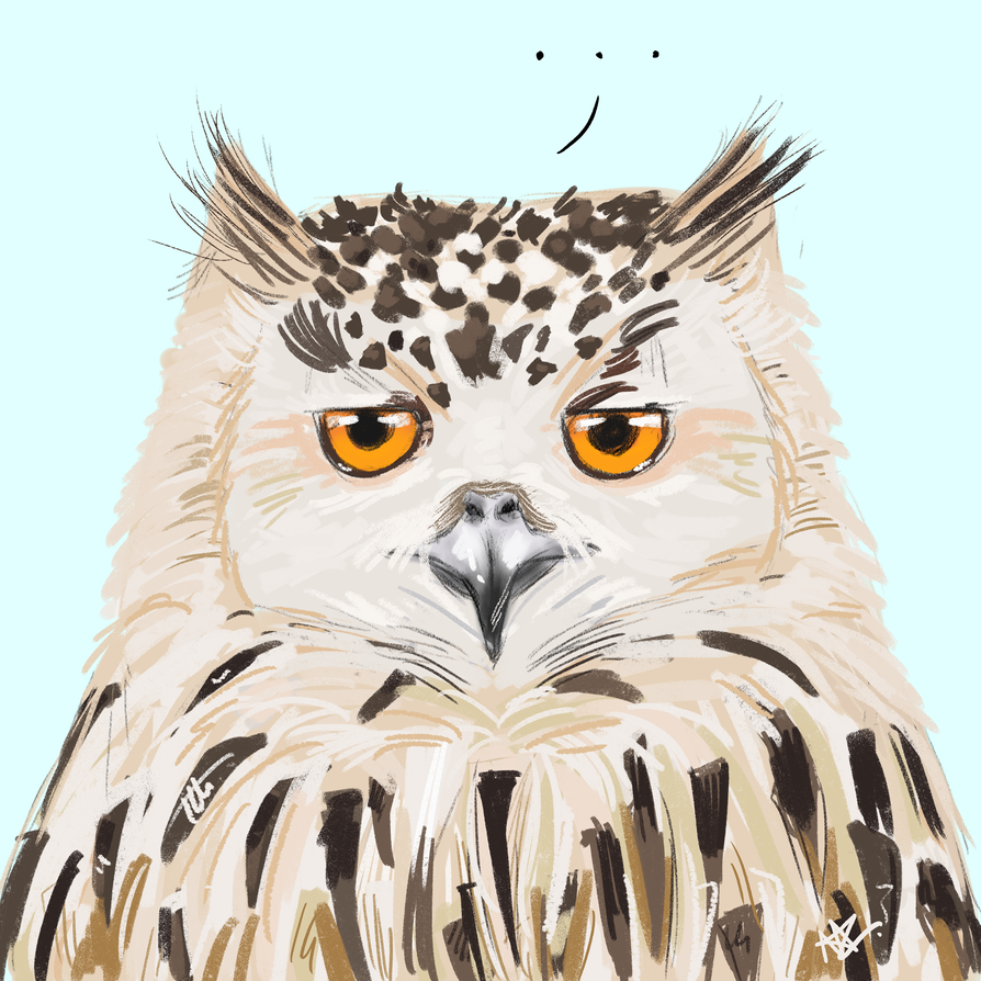 A Serious Owl by silver1ining