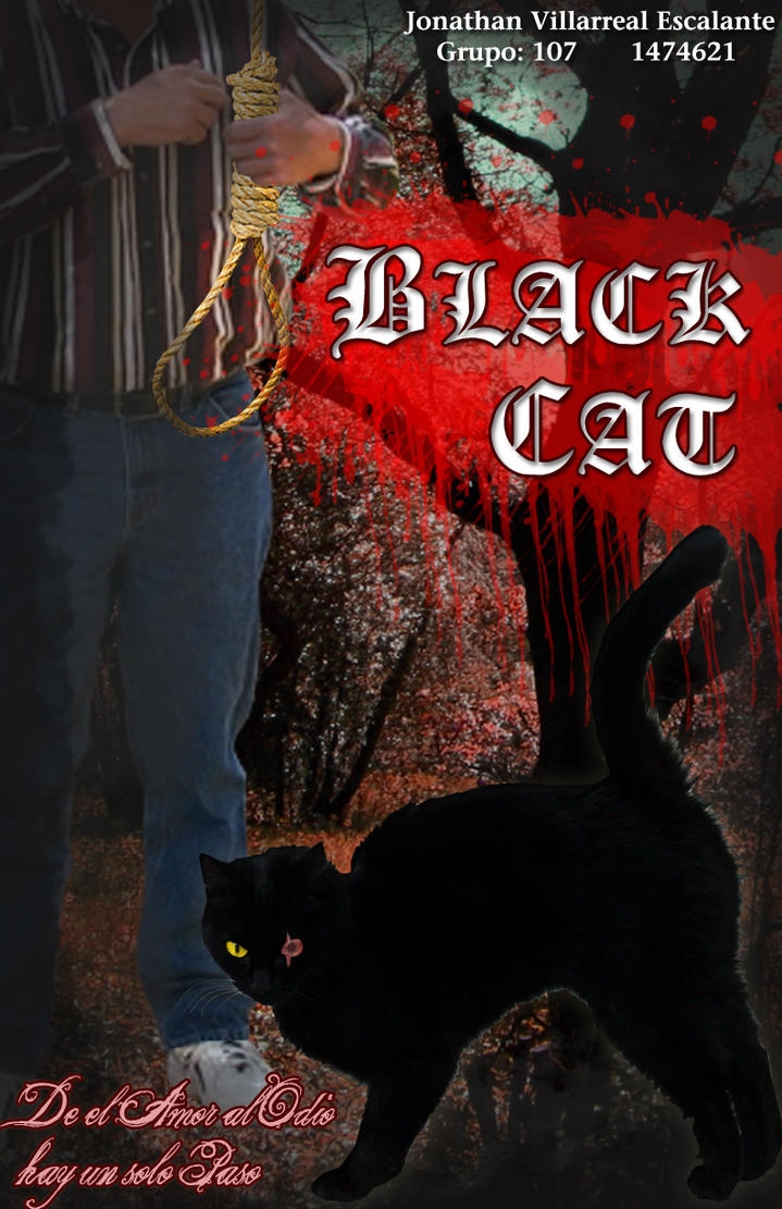 swaying from love to hate in the black cat by edgar allan poe Unlike most editing & proofreading services, we edit for everything: grammar, spelling, punctuation, idea flow, sentence structure, & more get started now.