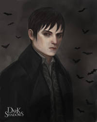 Dark Shadows Portrait by Asterisks