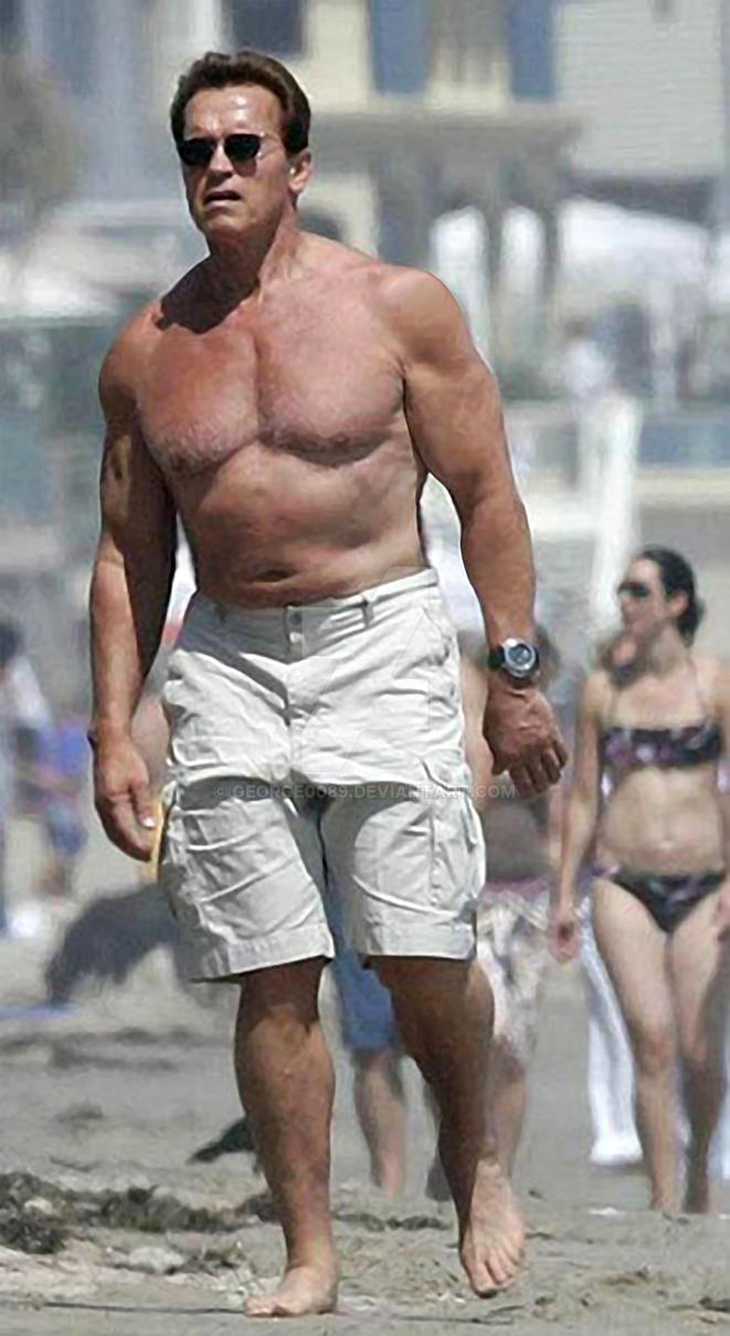 Arnold schwarzenegger new body hd by george0089 on deviantart arnold schwarzenegger new body hd by george0089 voltagebd Images
