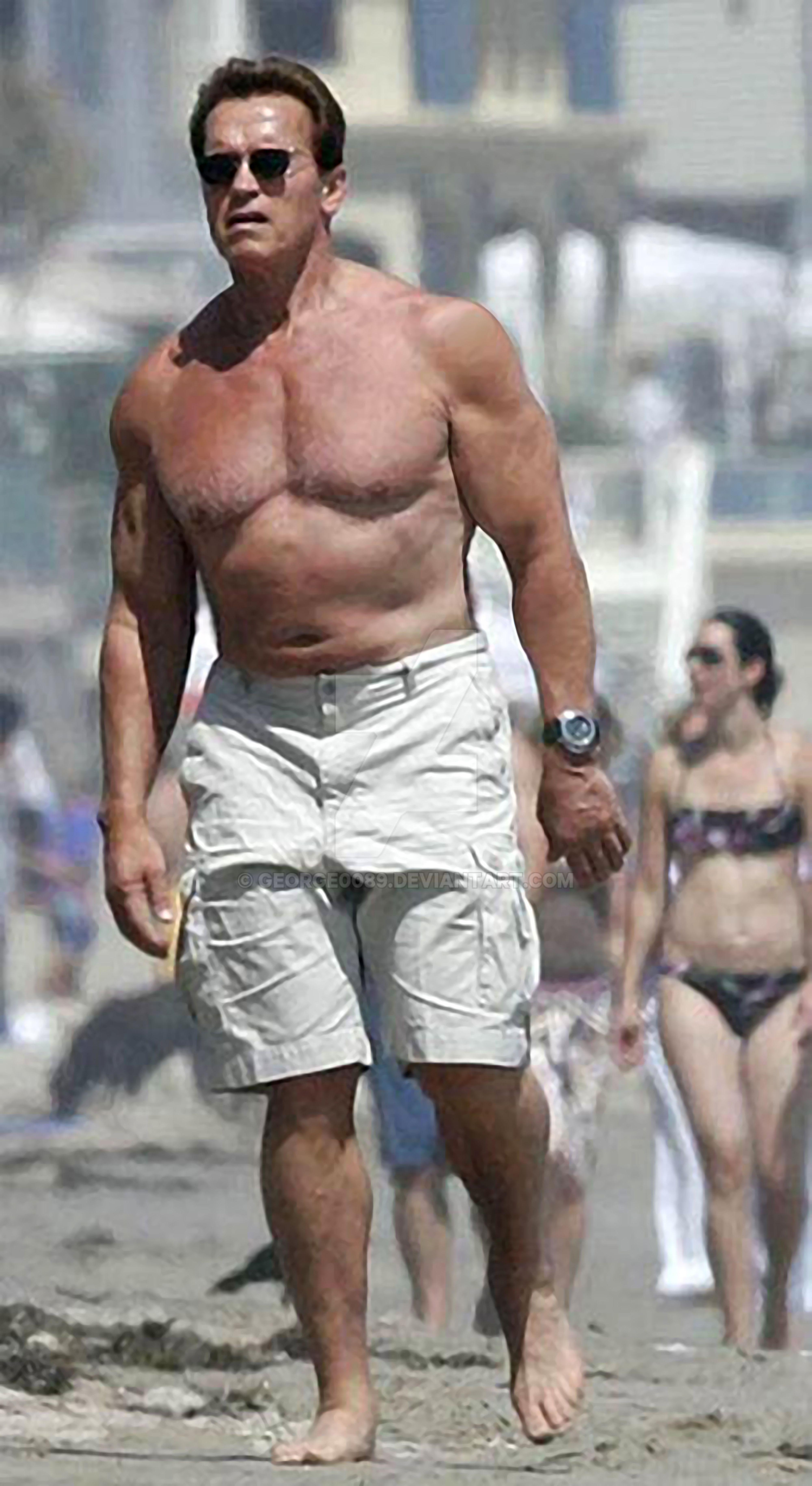 Arnold Schwarzenegger Now 2013 Body