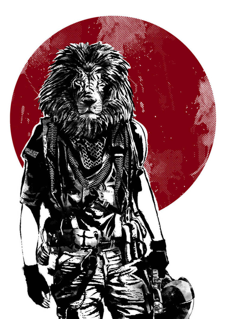 Lion by qins