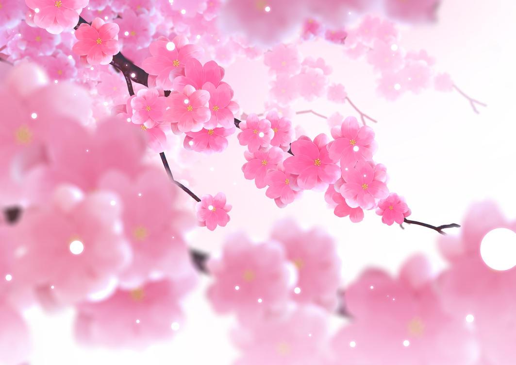 Sakura by teagirl-vn