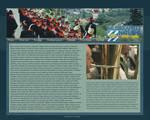 Musikkapelle Homepage