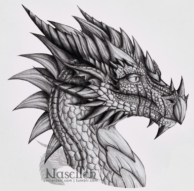 Portrait of Veteran Dragon by Naseilen on DeviantArt Drawings Of Dragons Realistic