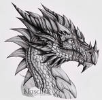 Portrait of Veteran Dragon