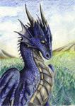 Sunshine Dragon
