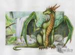 Dragon 25