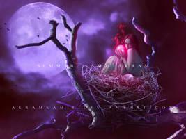Lady Bird by akramkamil