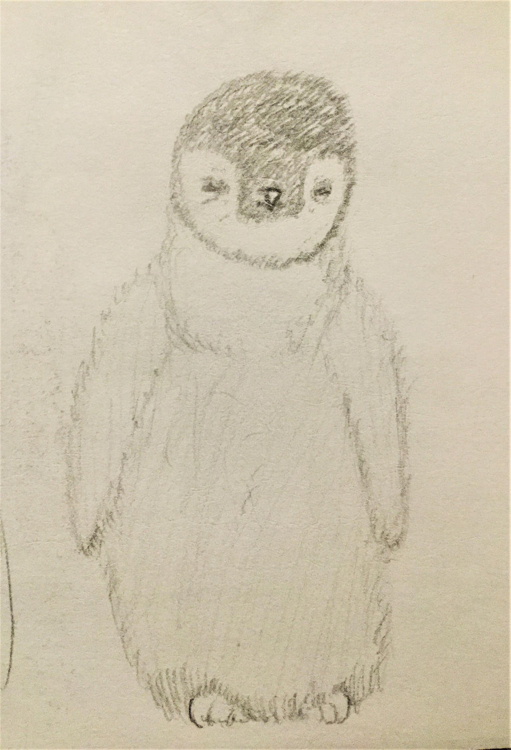 Penguin by LibraryCrew