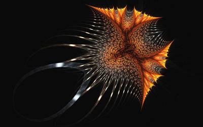 Beauty of the deep sea