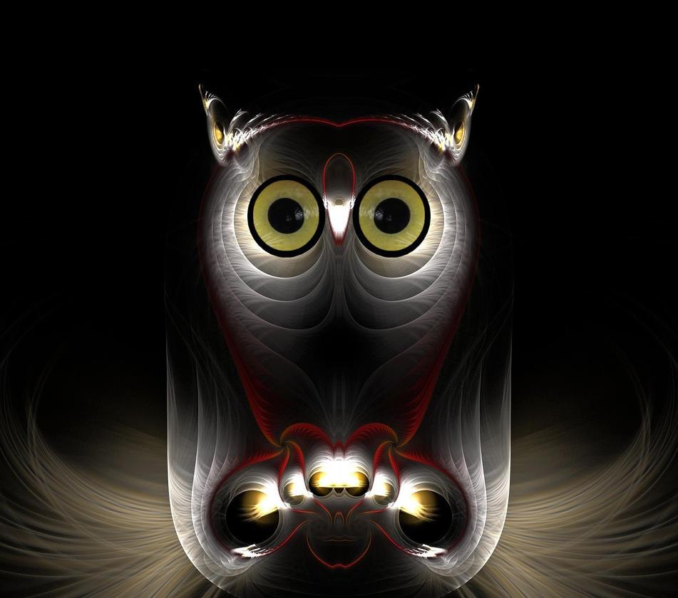 Night Owl by eReSaW