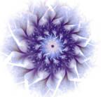 Blue flower of imagination