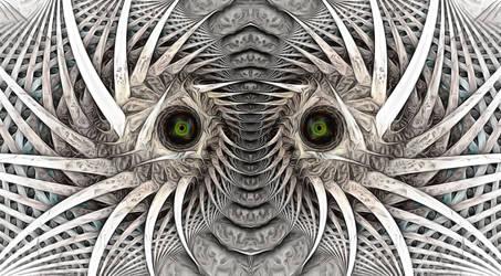 crazy eyes by eReSaW