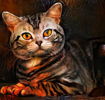 There is a small tiger in each cat by eReSaW