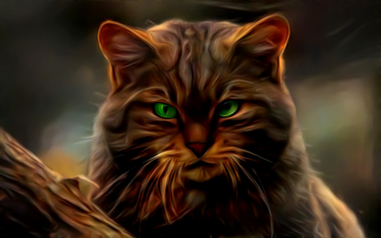 Chocolate cat with peppermint eyes by eReSaW